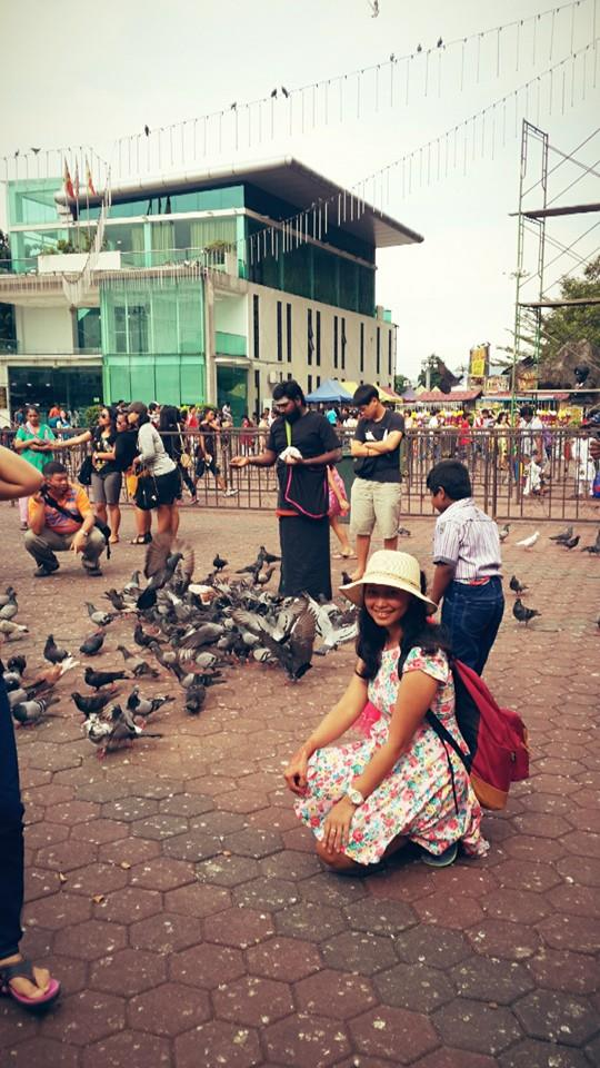 Take a Picture with Pigeon - Part II